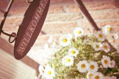 Blumen Eingangstür